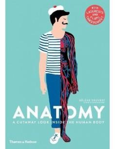 Anatomy: A Cutaway Look...