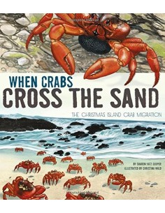 When Crabs Cross the Sand :...