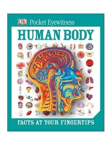 DK Pocket Eyewitness Human Body