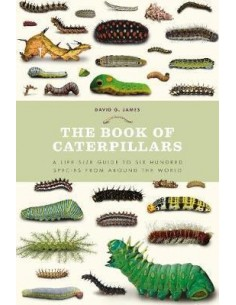 The Book of Caterpillars : A life-size guide to six hundred species from around the world