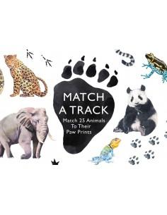 Match a Track : Match 25...