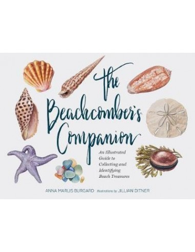 The Beachcomber's Companion : An Illustrated Guide to Collecting and Identifying Beach Treasures