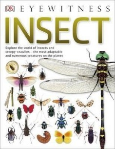 Insect : Explore the world of insects and creepy-crawlies - the most adaptable and numerous creatures on the planet